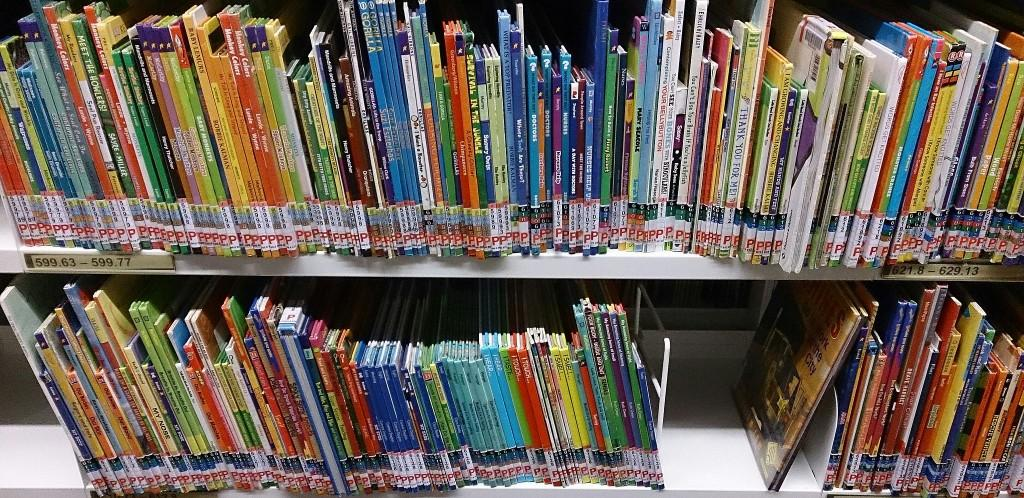 Two Horizontal Library Shelves Filled with Children's Books